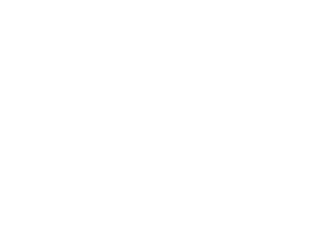 Official Selection - Lone Star Film Festival